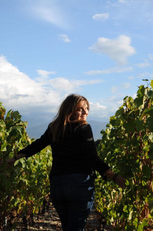 Paysage vigne avec la créatrice